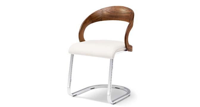 Freischwinger Holzmöbel - Stühle aus Holz