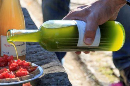 Olivenöl, LaVialla, Schutz vor oxidativem Stress